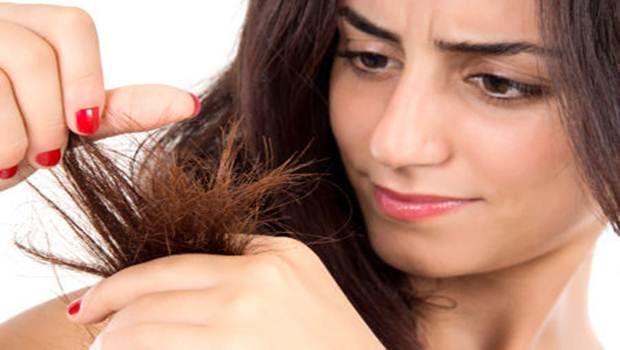 16 consejos naturales caseros probados para el cabello seco expuesta