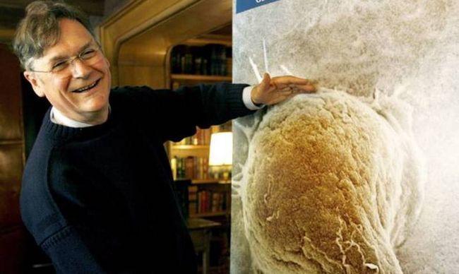 #Distractinglysexy: Notas de científicas se burlan Sr. Tim Hunt en twitter con fotos divertidas!