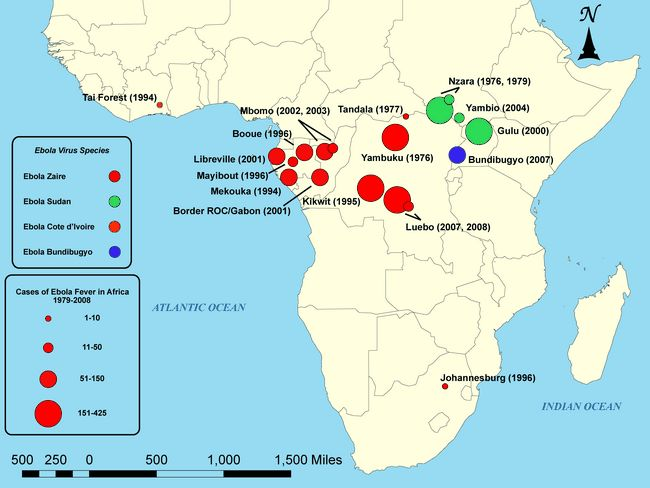 La historia del virus del Ébola