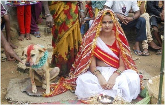 6 rituales de la boda extrañas que pueden suceder sólo en la India