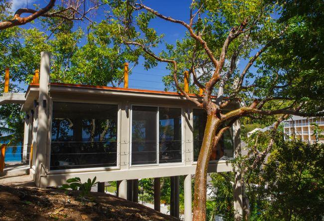 El estudio de giro se encuentra en una casa del árbol