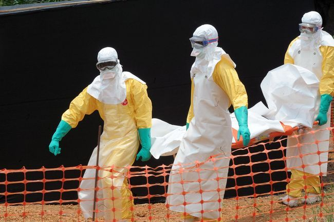Ébola novedades