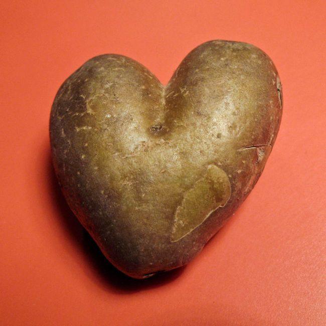 Valentine solución: el anillo de alambre de enfardar