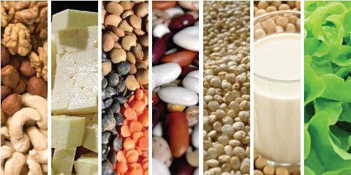 proteínas vegetarianas